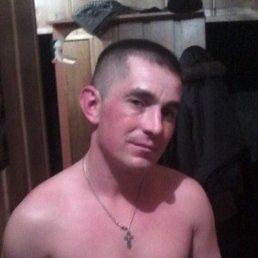 андрей, 38 лет, Ждановка