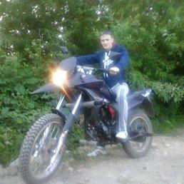 Евгений Чижов, 29 лет, Лениногорск