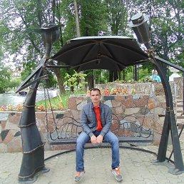 Денис, 43 года, Жарковский