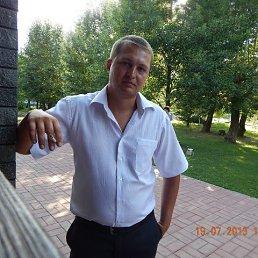 Сергей, 31 год, Алексеевка