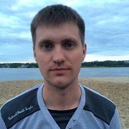 Роман, 29 лет, Кострома