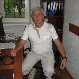 Григорий, 63 года, Светловодск