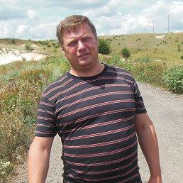 Владимир, 42 года, Гуляйполе