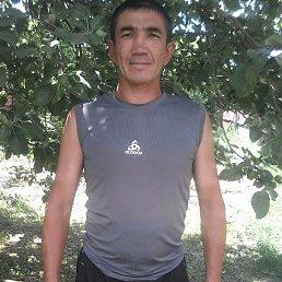 Тимур, 43 года, Саратовский