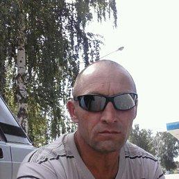 александр, 51 год, Белинский
