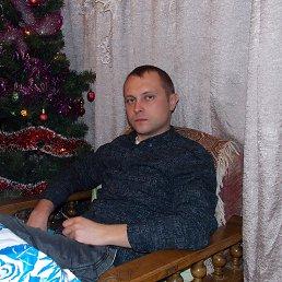 Артем, 34 года, Шаховская