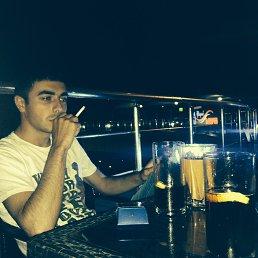 Гарик, 27 лет, Раменское