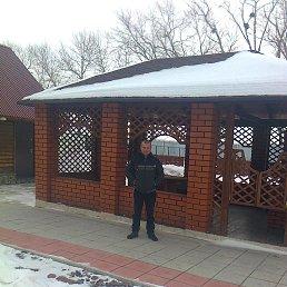 Александр, 52 года, Калниболотская