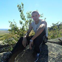 Евгений, 31 год, Староалейское
