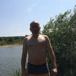 Сергей, 34 года, Одинцово