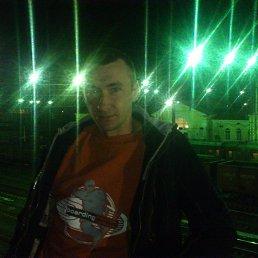 Владимир, 33 года, Диканька