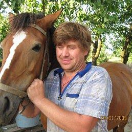 Сергей, 53 года, Костополь