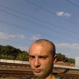 Александр, 30 лет, Гребенка