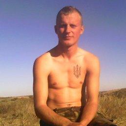 Вася, 29 лет, Горохов