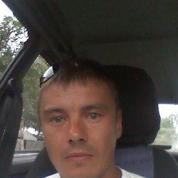 Анндрей, 39 лет, Киров