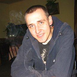 Дмитрий, 31 год, Афипский