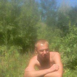 Лёша, 24 года, Изюм