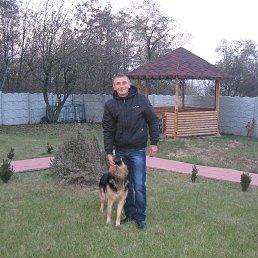 Александр, 43 года, Голая Пристань
