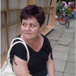 анна, 54 года, Виноградов