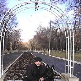 Владимир, 45 лет, Кировск
