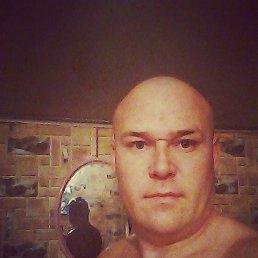 Александр, 38 лет, Лысые Горы