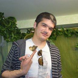 руслан, 33 года, Клин