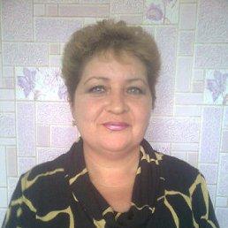 Светлана, 53 года, Александрия