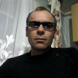 алик, 44 года, Болгар