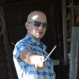 Михаил, 27 лет, Редкино