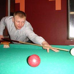 Александр, 42 года, Луга