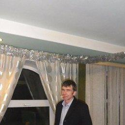 денис, 34 года, Шаховская