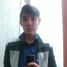 Руслан, 22 года, Красногорский
