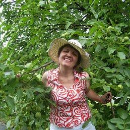 Наташа, 55 лет, Бердичев