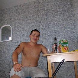 Александр, 24 года, Синельниково