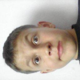 Олег, 17 лет, Подгайцы