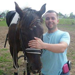 Алексей, 33 года, Егорьевск