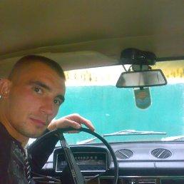 Николай, 32 года, Малая Виска