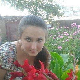Жизнь, 24 года, Новоград-Волынский