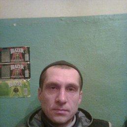 Федор, 40 лет, Селты