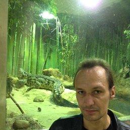 Дима, 39 лет, Солнечногорск-7