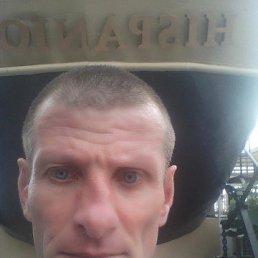 владимир, 48 лет, Новый Буг