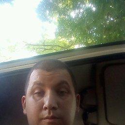 Дмитрий, 33 года, Абрау-Дюрсо