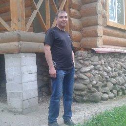 валера, 46 лет, Осташков