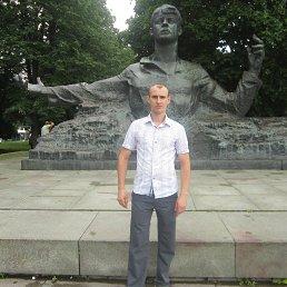 Василий, 32 года, Рязань