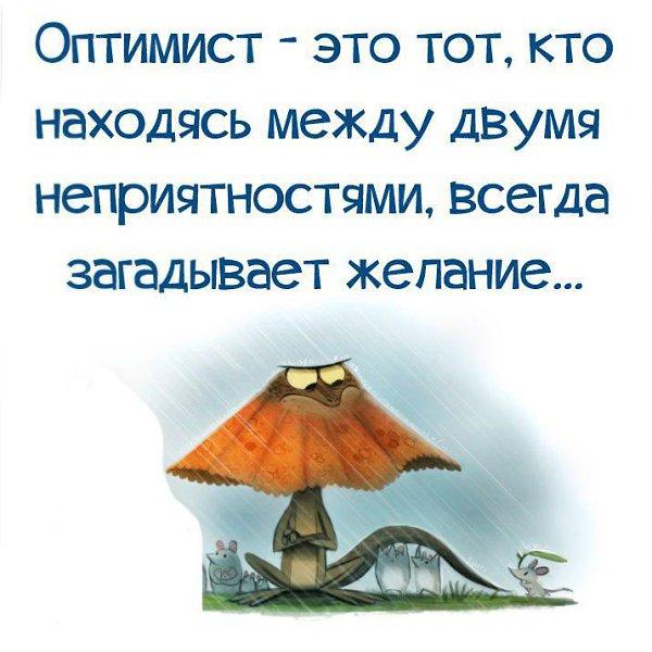 Картинки про оптимизм в жизни, путиным медведевым