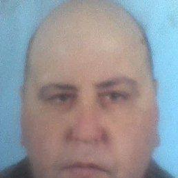 Николай, 45 лет, Аскания-Нова