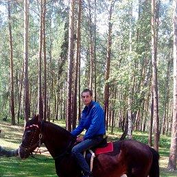 Вячеслав, 27 лет, Касли