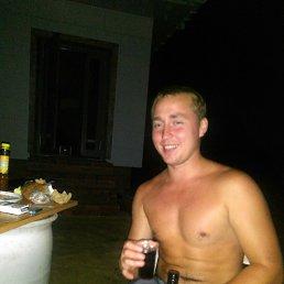 Владимир, 27 лет, Бронницы