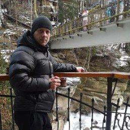 сережа, 39 лет, Березань