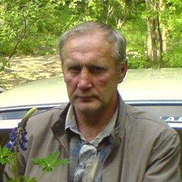 Николай, 65 лет, Корсунь-Шевченковский